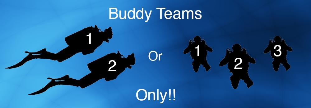 Buddy Team